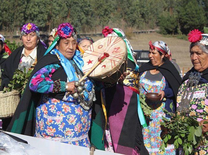 Comunidad Mapuche Antonio Pañitrur del Bajo Malleko