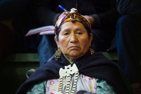 mujer-mapuche